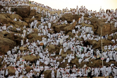 Muslim pilgrims arrive to pray at Mount Arafat, southeast of the Saudi holy city of Mecca. Nov. 15, 2010. (Mustafa Ozer - AFP/Getty Images)