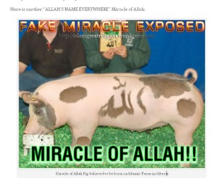 Fake miracles islam worlds greatest religion few other fake images from same person altavistaventures Image collections