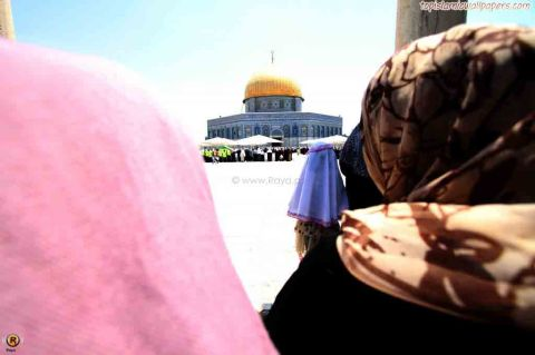 Ramadan 2012 Palestine Muslims Dome of Rock