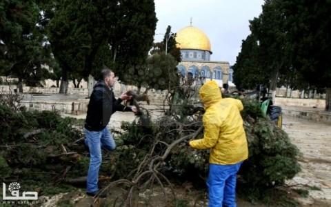 jan-7-2013-aftermath-storm-west-bank-palestine-1