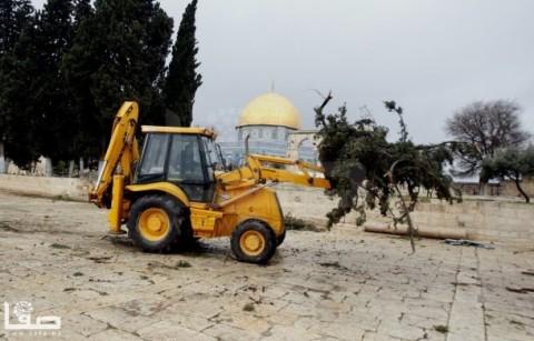 jan-7-2013-aftermath-storm-west-bank-palestine-44