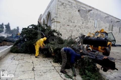 jan-7-2013-aftermath-storm-west-bank-palestine-5